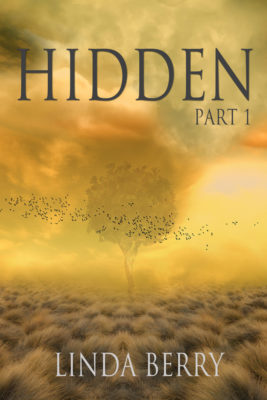 Hidden Book Cover